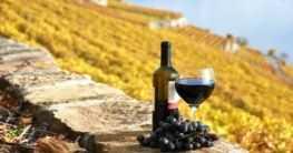 Wein aus der Toskana